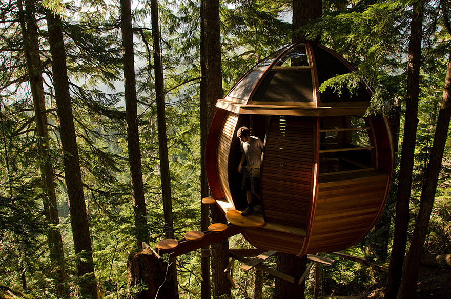 Treehouses for freedom