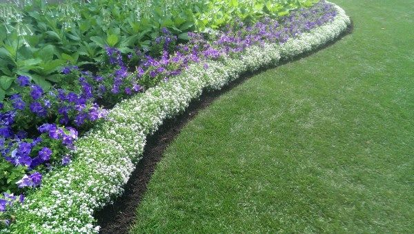 Ideas for garden borders and edging at home