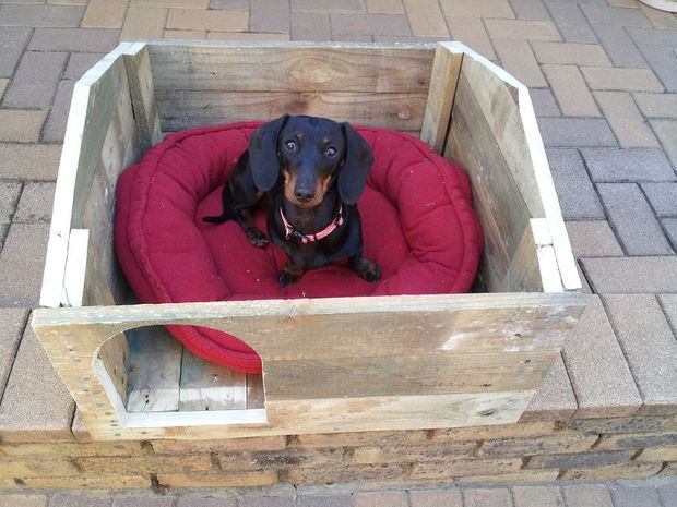 construirea unei custi de caine how to build a dog house with pallets 9