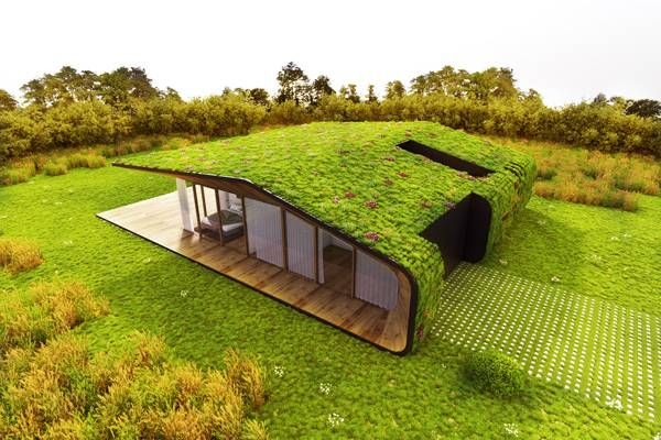 Awesome Grass 3D House | Centers And Squares ...