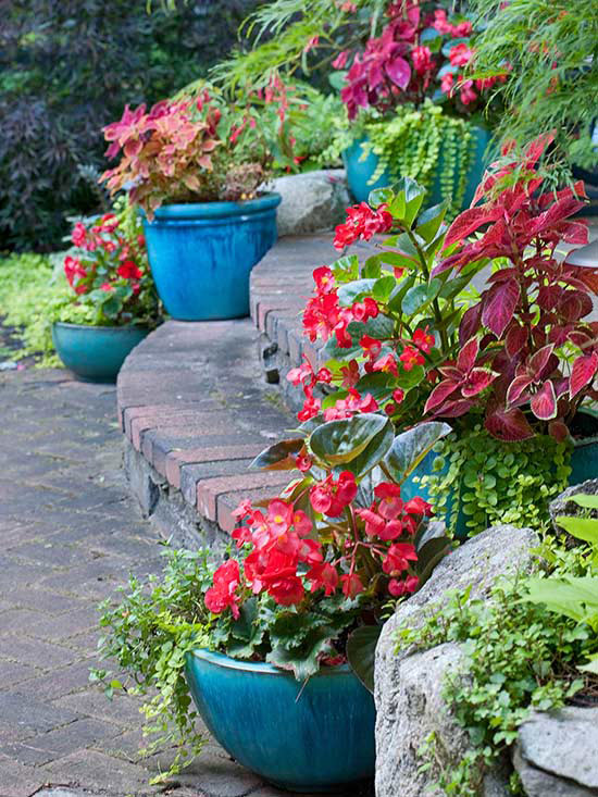 How to landscape a sloping garden efficient ideas for Easy to care for outdoor flowering plants