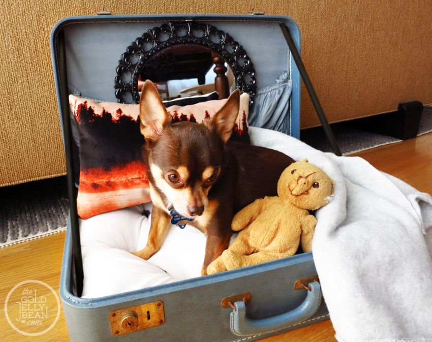 Repurposing old suitcases at home