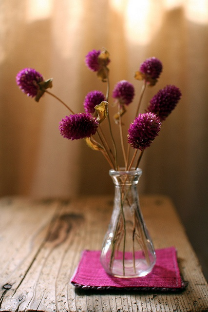 Best dried flower arrangements at home