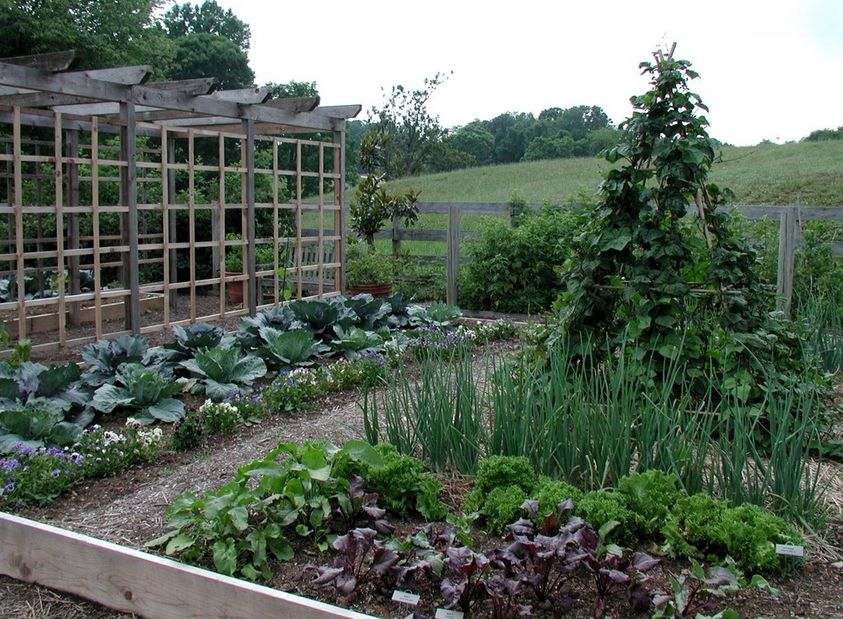 beautiful vegetable garden ideas new england in the i like this - Vegetable Garden Ideas New England