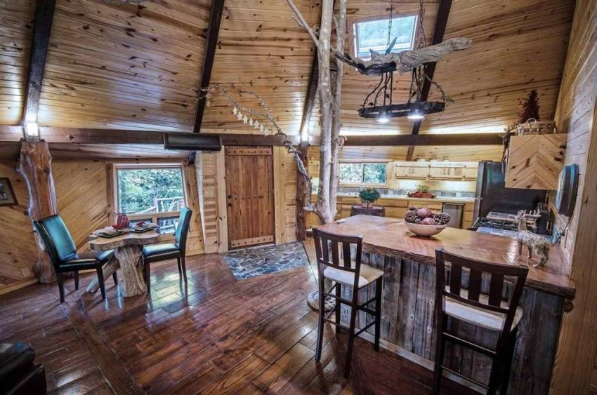 The hideout in the woods in America
