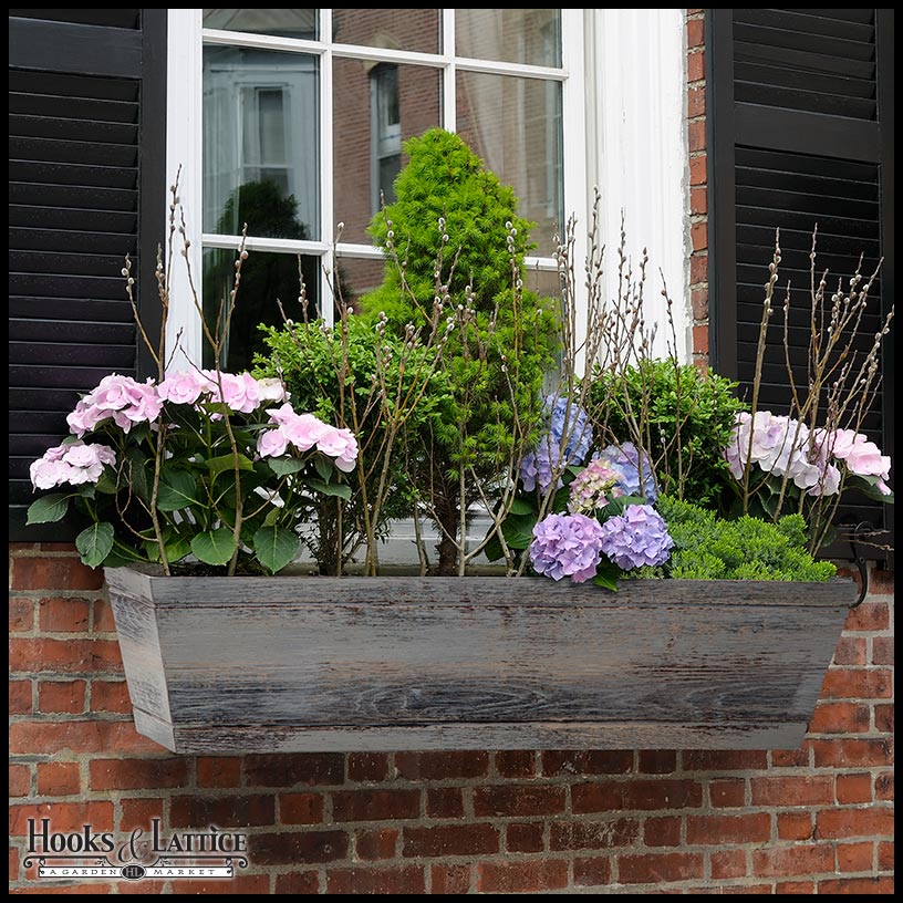 ferestre in stil englezesc English style window boxes 7