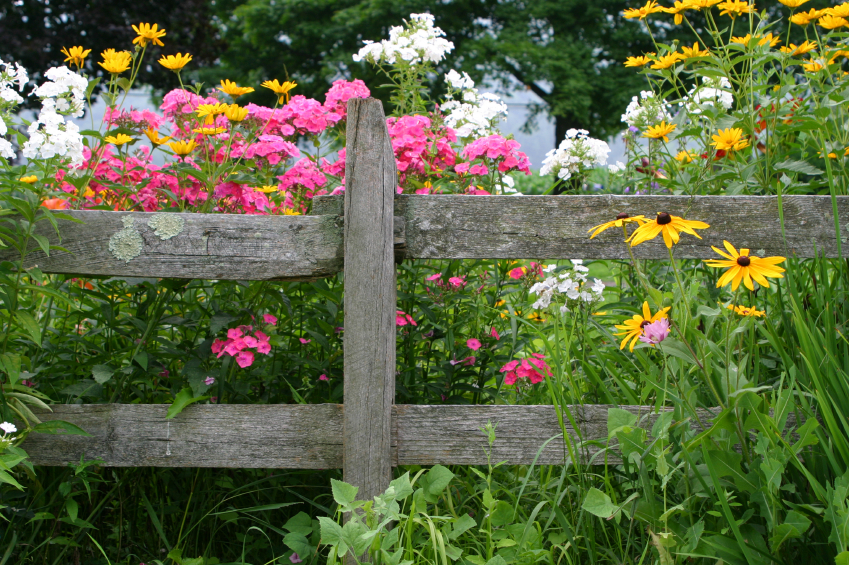 Beautiful garden fencing ideas for Pretty fencing ideas