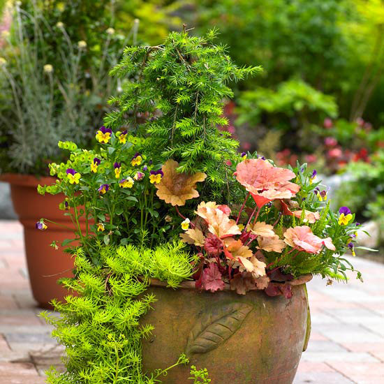 Front yard landscape ideas for all