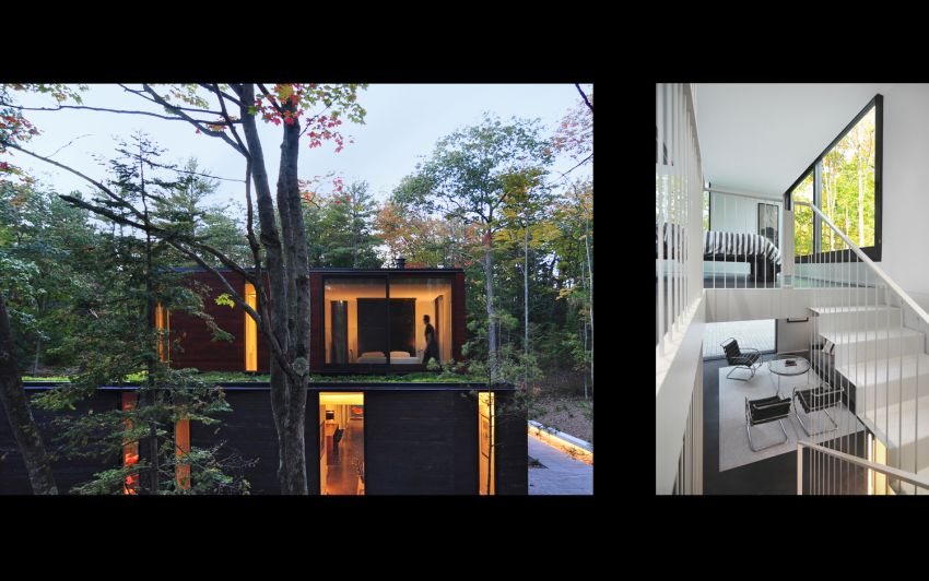 casa din padure the house in the woods 7