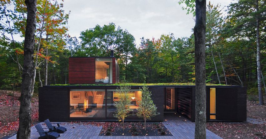 casa din padure the house in the woods
