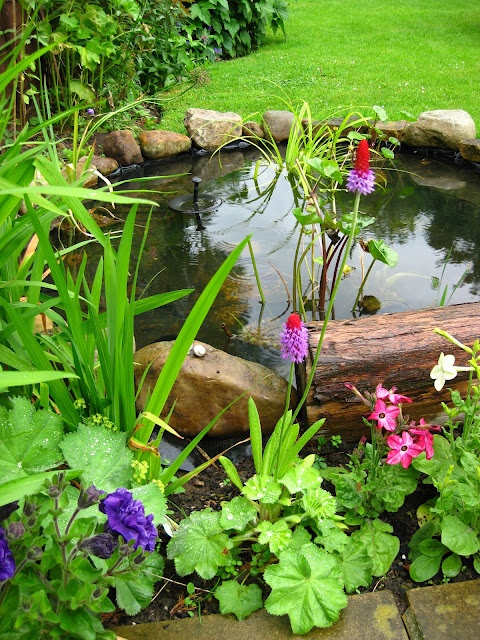 Garden pond design ideas for all