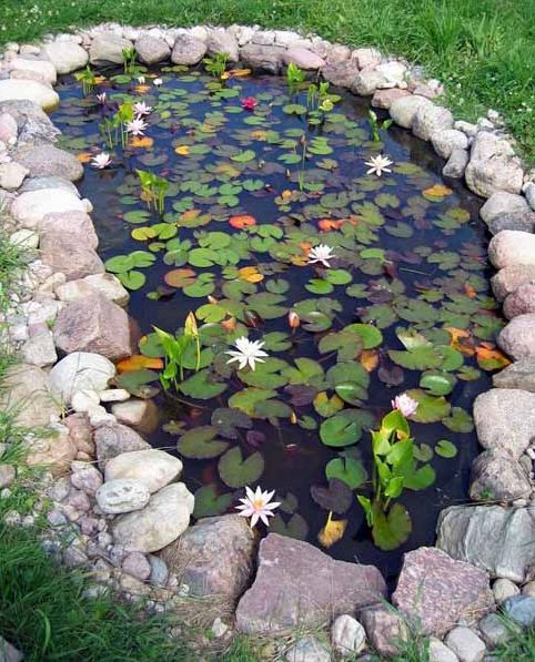 15 charming garden pond design ideas houz buzz for Landscaping around a small pond