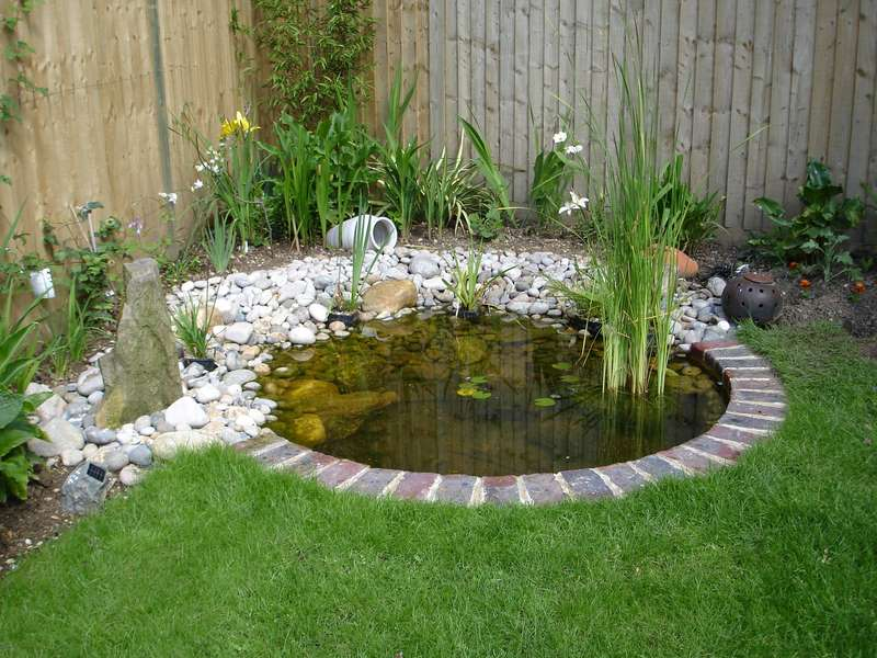 15 charming garden pond design ideas houz buzz for Design fish pond backyard