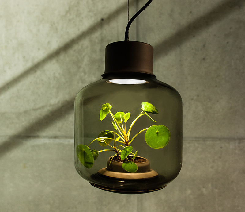 Plant growing lamps easily