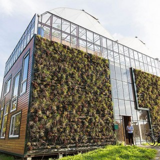 Case ecologice archives case practice - The greenhouse residence in rotterdam ...