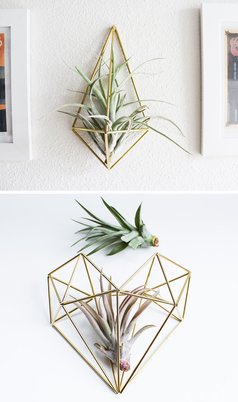 decoruri elegante cu plante care cresc fara pamant Elegant ways to display air plants in your home 1