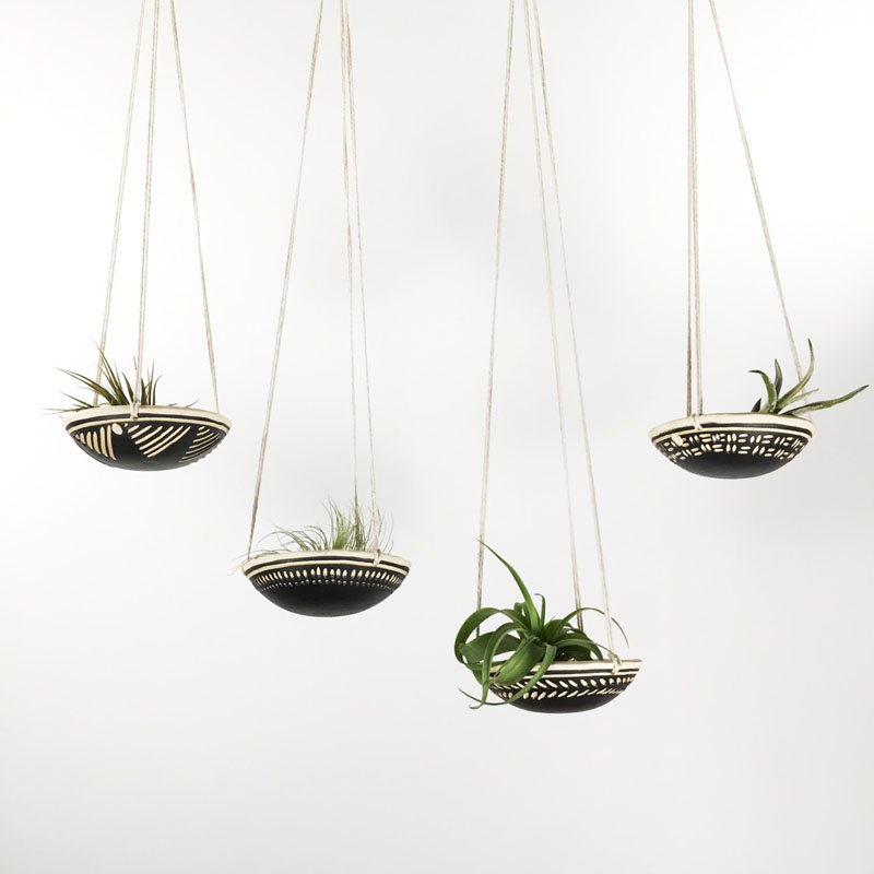 decoruri elegante cu plante care cresc fara pamant Elegant ways to display air plants in your home 8