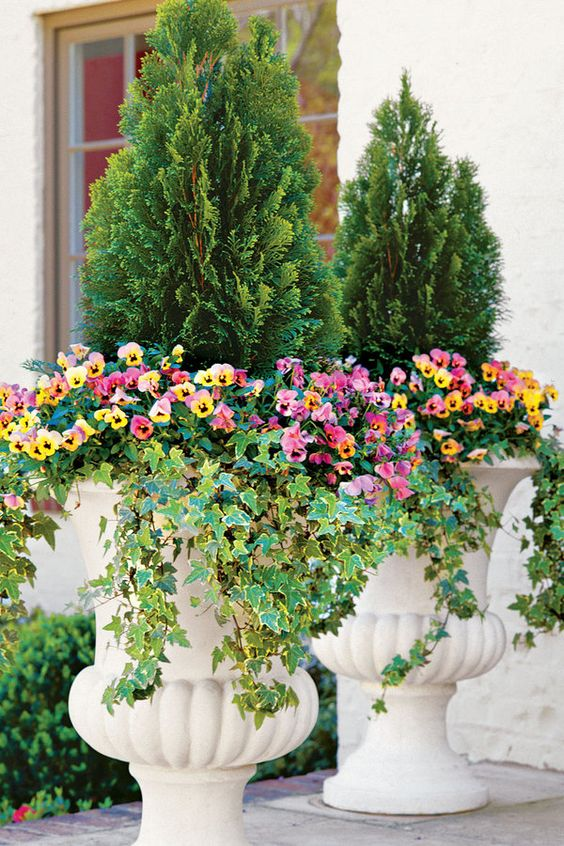 gradini amenajate cu conifere evergreen landscaping ideas 10