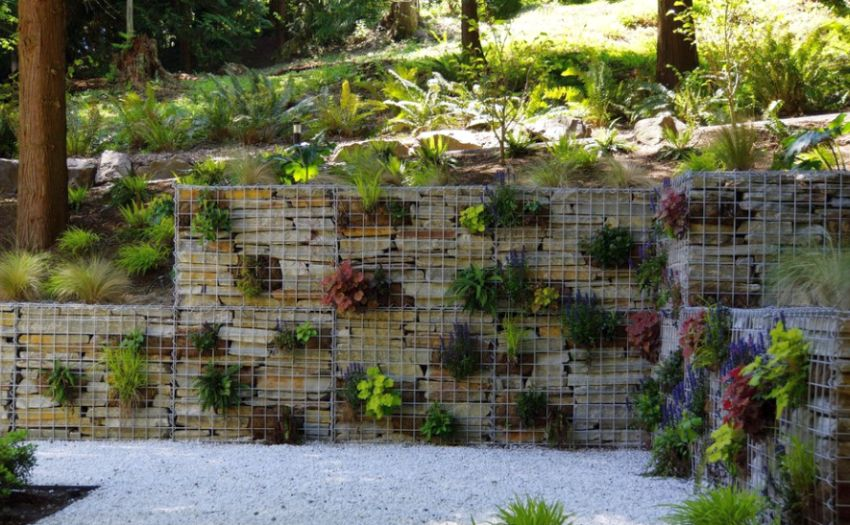 Amenajarea gradinii cu gabioane Gabion garden landscaping ideas 5