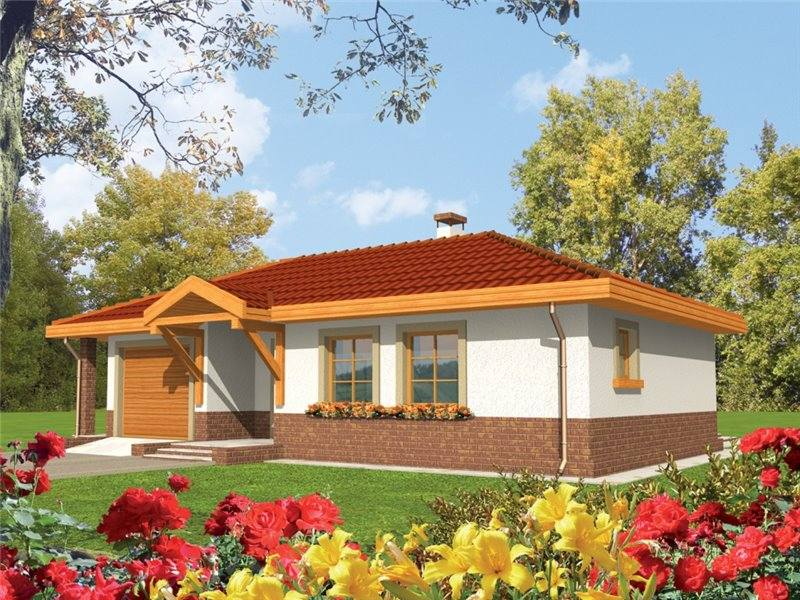 classic style homes with garage