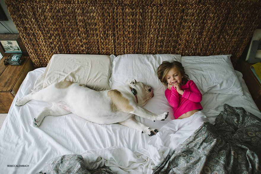 best dog breeds with children
