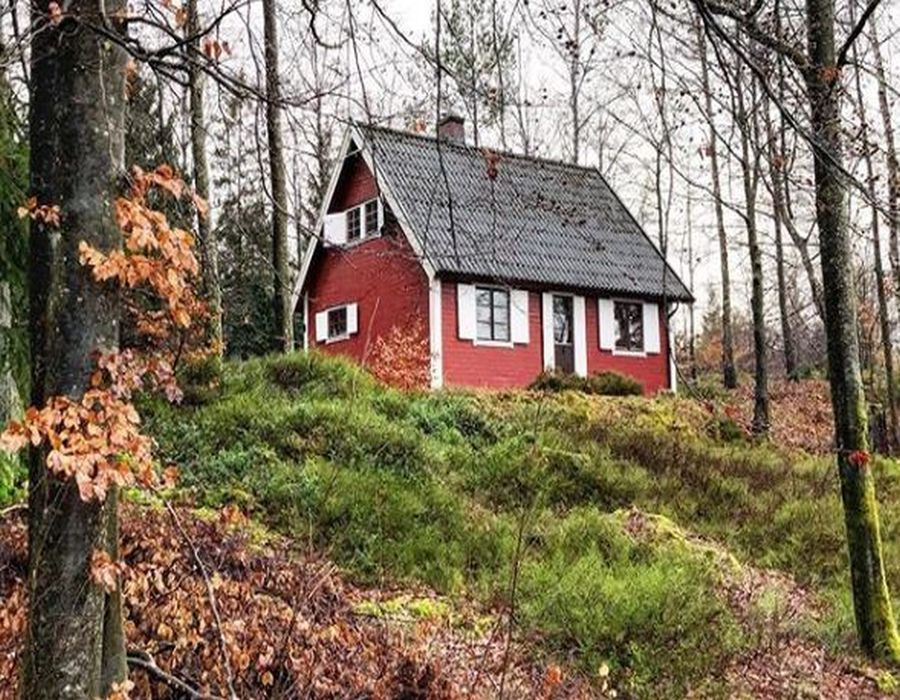 Casa in stil scandinav, in padure